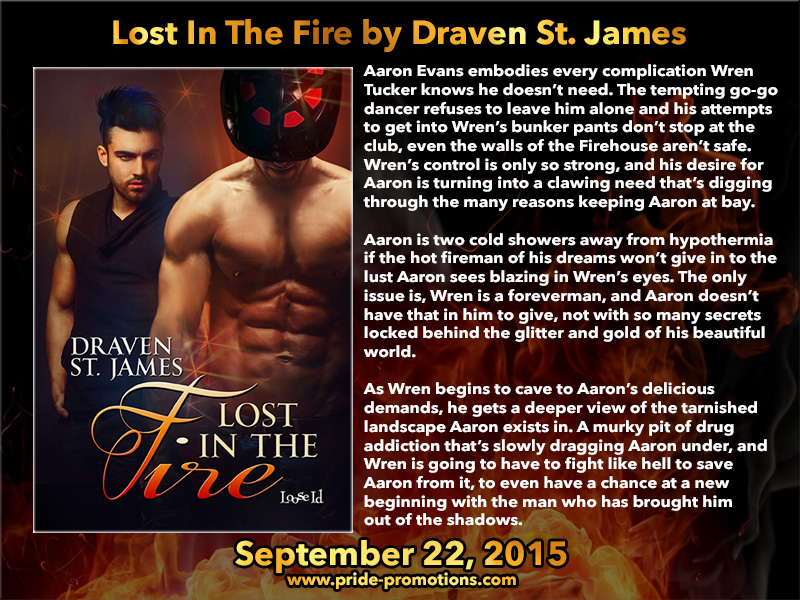 BLOG TOUR: Lost in the Fire by Draven St. James