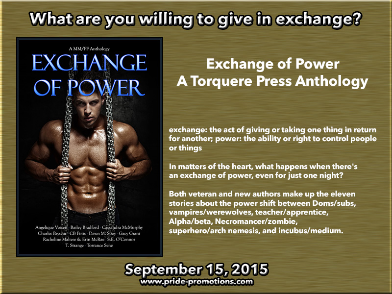 BLOG TOUR: Exchange of Power Anthology