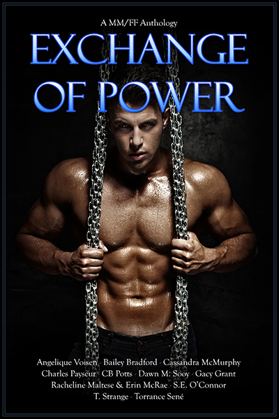 Buy Exchange of Power Anthology