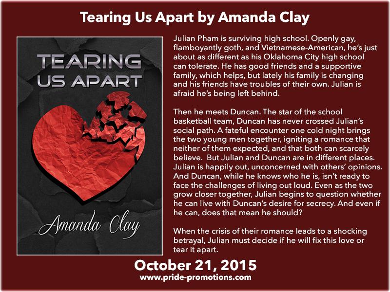 BLOG TOUR: Tearing Us Apart by Amanda Clay