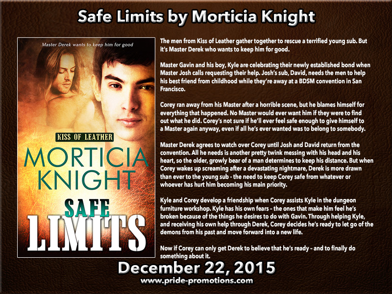 BOOK BLAST: Safe Limits by Morticia Knight