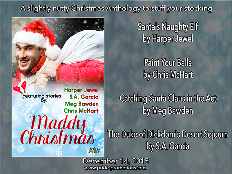 BOOK BLAST: Maddy Christmas Anthology