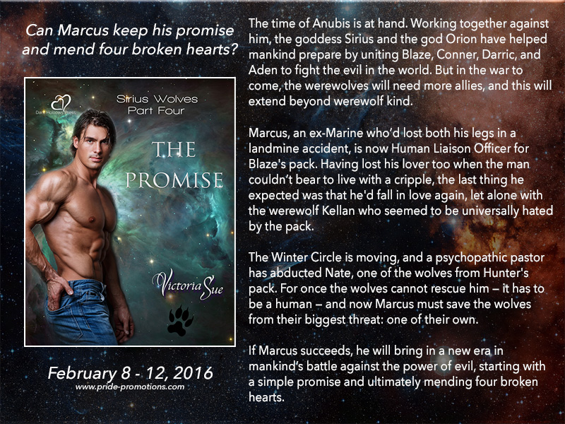 BLOG TOUR: The Promise by Victoria Sue