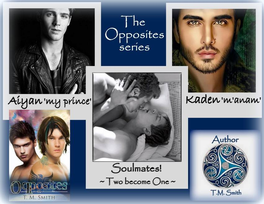 BLOG TOUR: Opposites Series by T.M. Smith