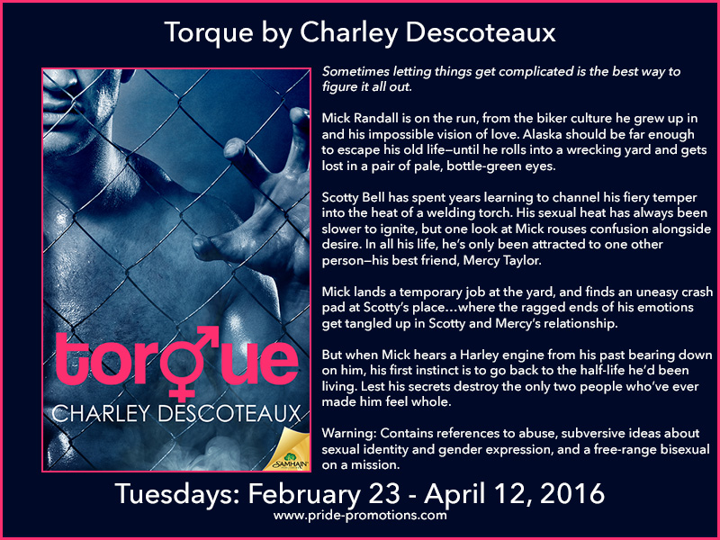 BLOG TOUR: Torque by Charley Descoteaux