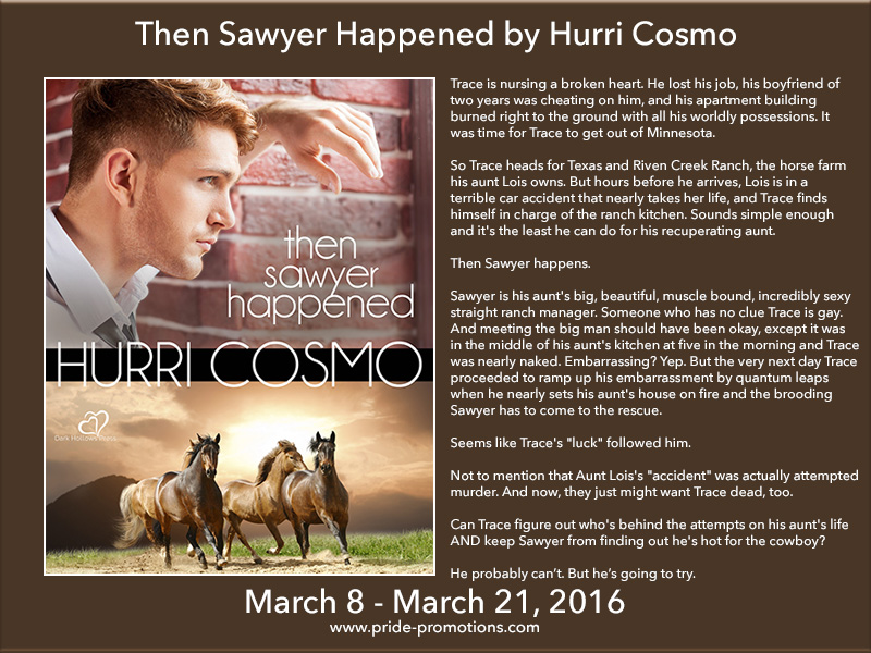 BLOG TOUR: Then Sawyer Happened by Hurri Cosmo