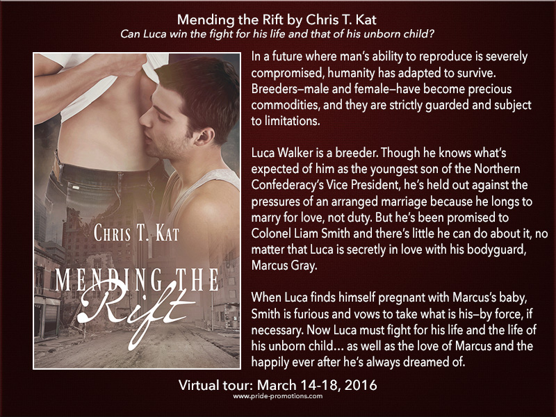 BLOG TOUR: Mending the Rift by Chris T. Kat