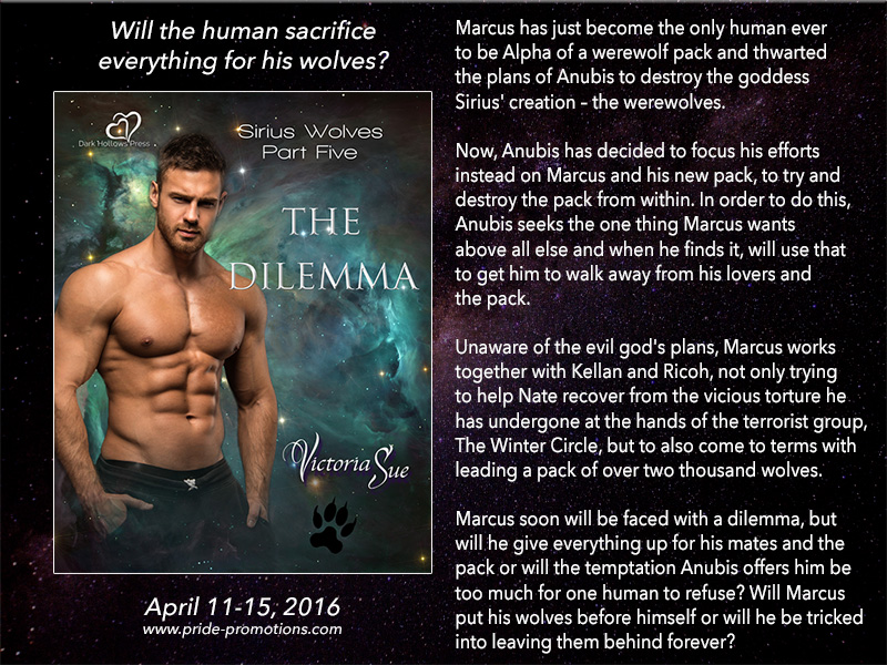 BLOG TOUR: The Dilemma by Victoria Sue