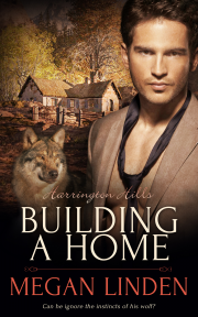 Buy Building a Home by Megan Linden on Amazon
