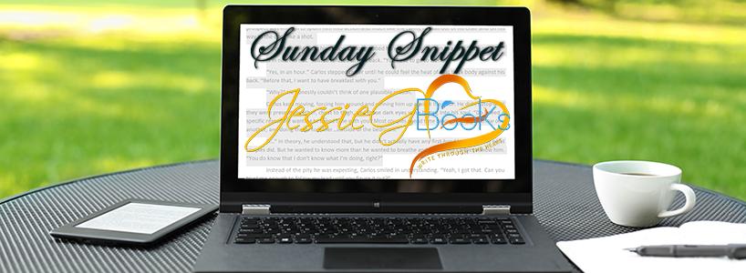 Sunday Snippet 2017