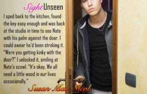 Sight Unseen by Susan Mac Nicol with Nicholas Downs
