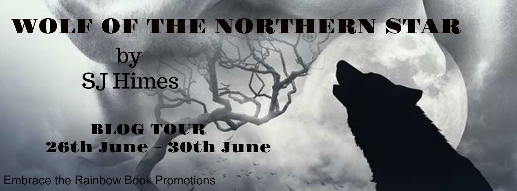 Get Wolf of the Northern Star by SJ Himes on Amazon & Kindle Unlimited