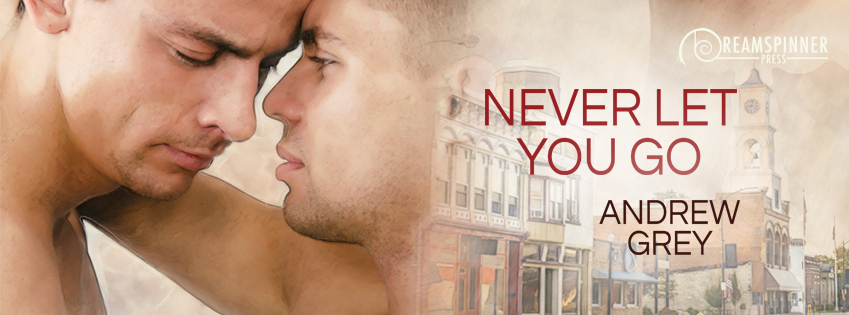 Buy Never Let You Go by Andrew Grey on Amazon