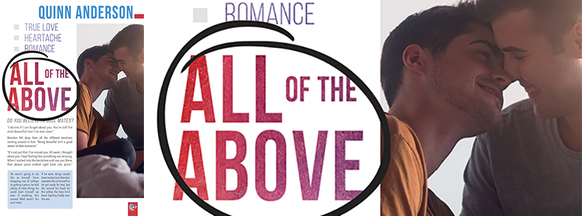 NEW RELEASE: All of the Above by Quinn Anderson
