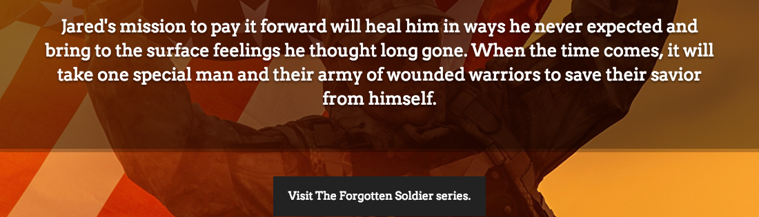 Forgotten Soldier Series
