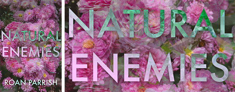DUELING REVIEWS: Natural Enemies by Roan Parrish