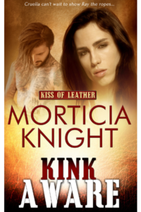 Buy Kink Aware by Morticia Knight on Amazon